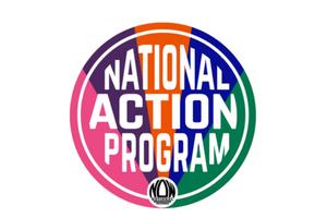 NAP Logo - Widget
